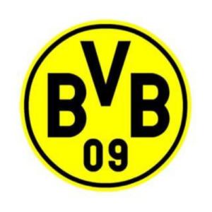 Lees meer over het artikel Dortmund trainingspak