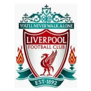 Lees meer over het artikel Liverpool trainingspak